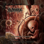 Placenta Powerfist - Pandemic Cleanse
